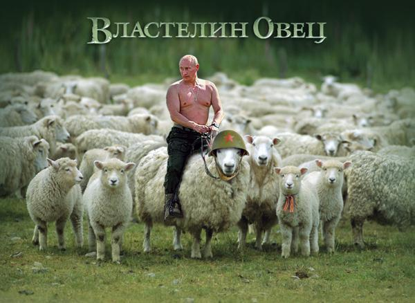 """""""У Путина я бы уже ничего не спрашивал. Мне и так все понятно. То, до чего мы дошли - караул"""", - российский рок-музыкант Шевчук - Цензор.НЕТ 9275"""
